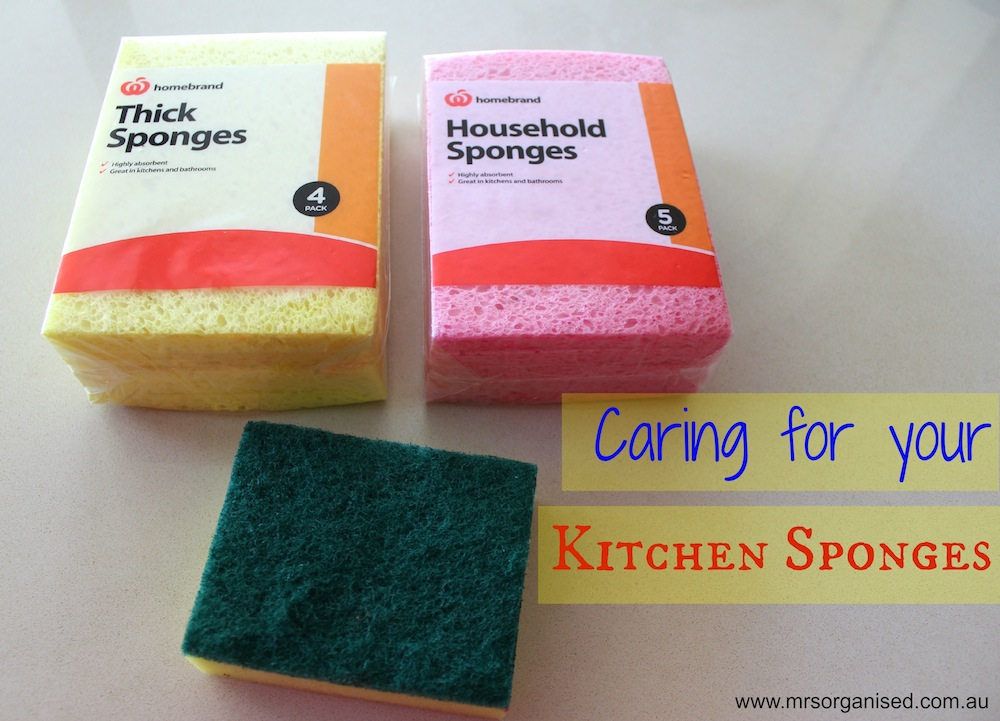 Caring for your Kitchen Sponges 001