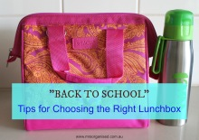 Back to School … Tips for Choosing the Right Lunchbox 001