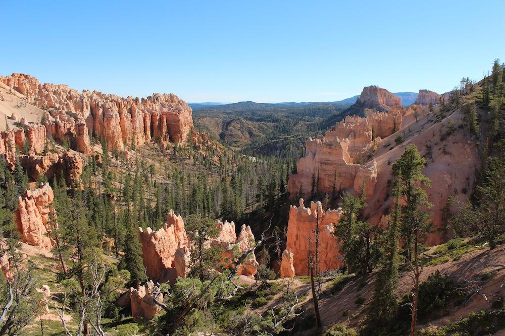 Bryce Canyon 011