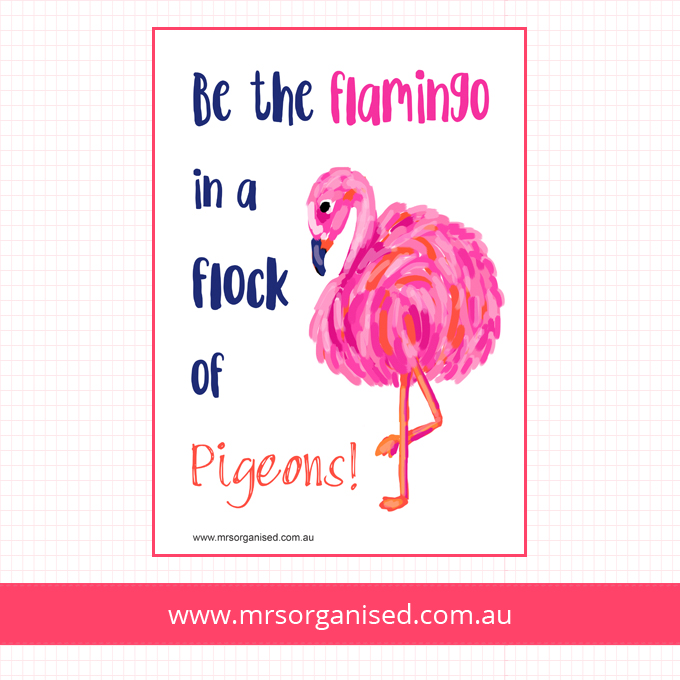Be the flamingo in a flock of Pigeons